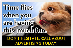Advertise in Pet Junction