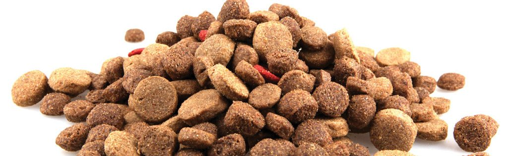 FDA and AAFCO Approved Foods…What is really in them? | Pet