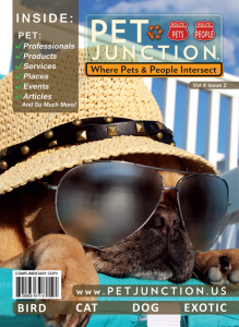 Pet Junction Cover