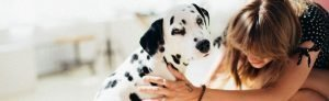 Pet Therapy Can Combat Homesickness