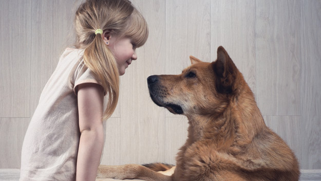 Why You Should Talk To Your Dog