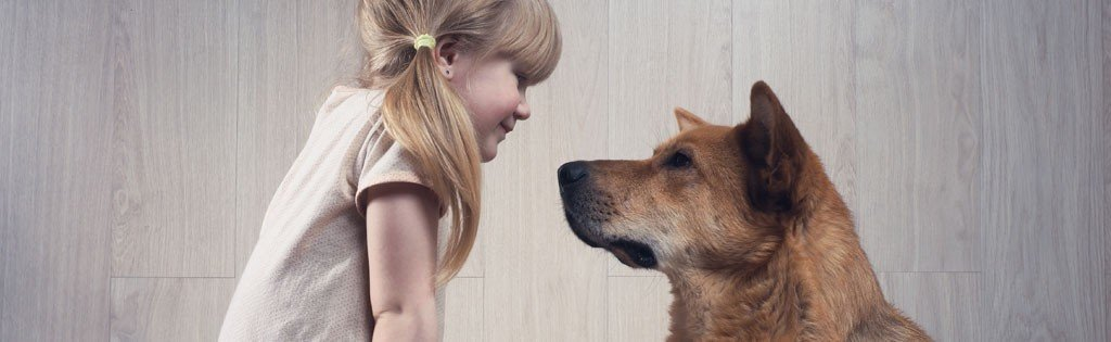 Why you should talk to your dog cover