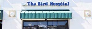 Bird & Exotic Hospital Cover