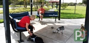 Gary B Jones Small Dog Park 7