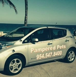 Pampered pets car