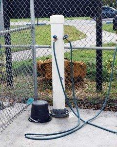 Pembroke Pines Dog Park Large Dog Side 2