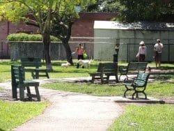 Poincianna Dog Park