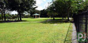 Wellington Dog Park 3