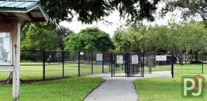 Wellington Dog Park General Area 3
