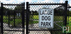 Wellington Dog Park Large Dog