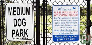 Wellington Dog Park Medium Dog