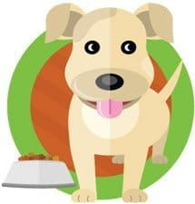 pet friendly dog