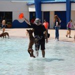 Waggin at the Waterpark 38