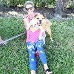 Paws in the Park, Jupiter Florida 22
