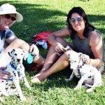 Paws in the Park, Jupiter Florida 31