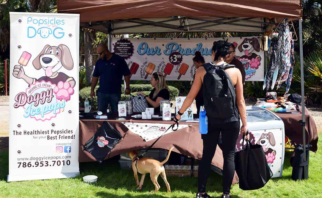 Doggy Fun fest 8