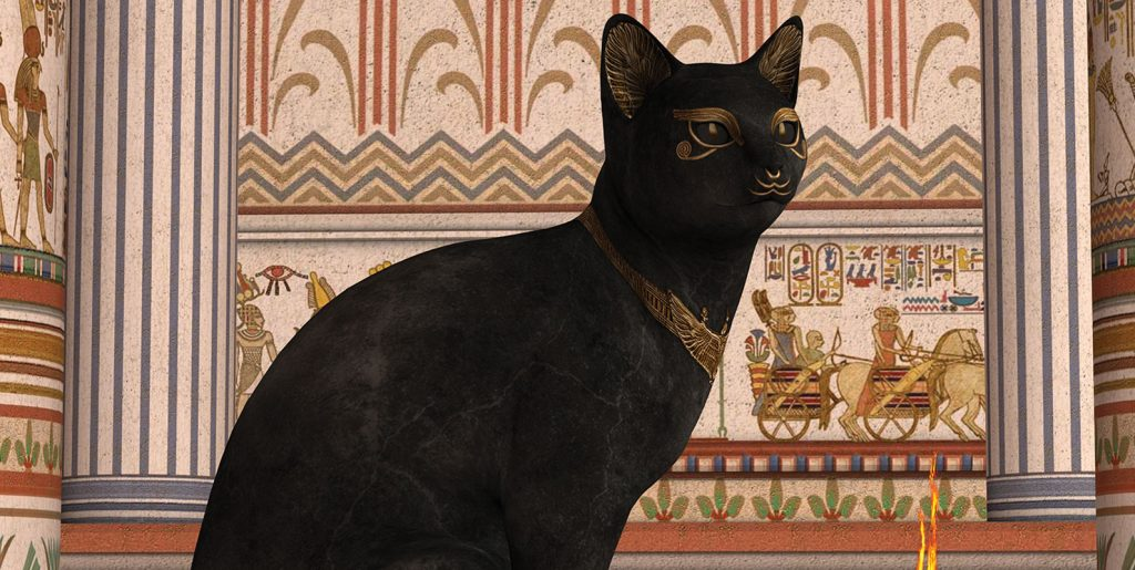 History of Domestic Cat