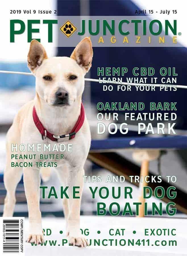 Pet Junction April 2019 Cover
