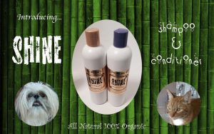 Organic Companion Shine