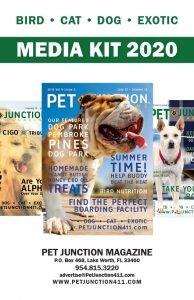 pet-junction-media-kit-1