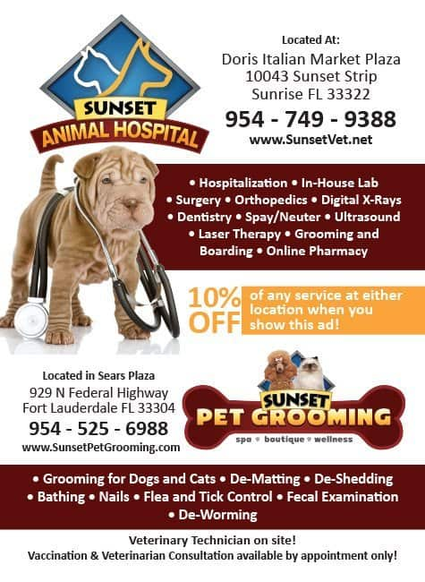 Sunset Pet Grooming