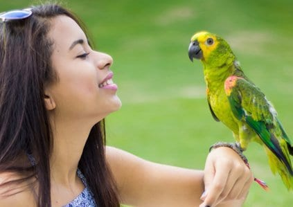 Amazon parrot with girl HP C