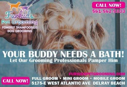 Furkids Pet Grooming ad in Pet Junction